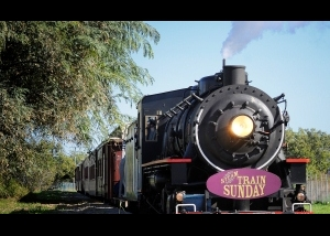 Steam Train Sunday Brisbane November 2015